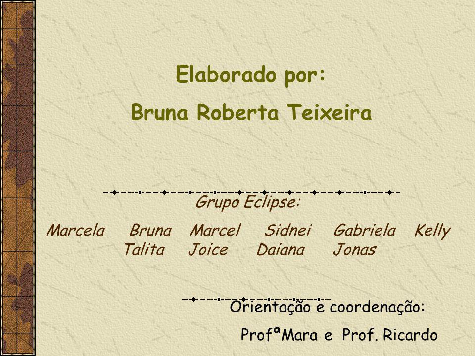 Bruna Roberta Teixeira