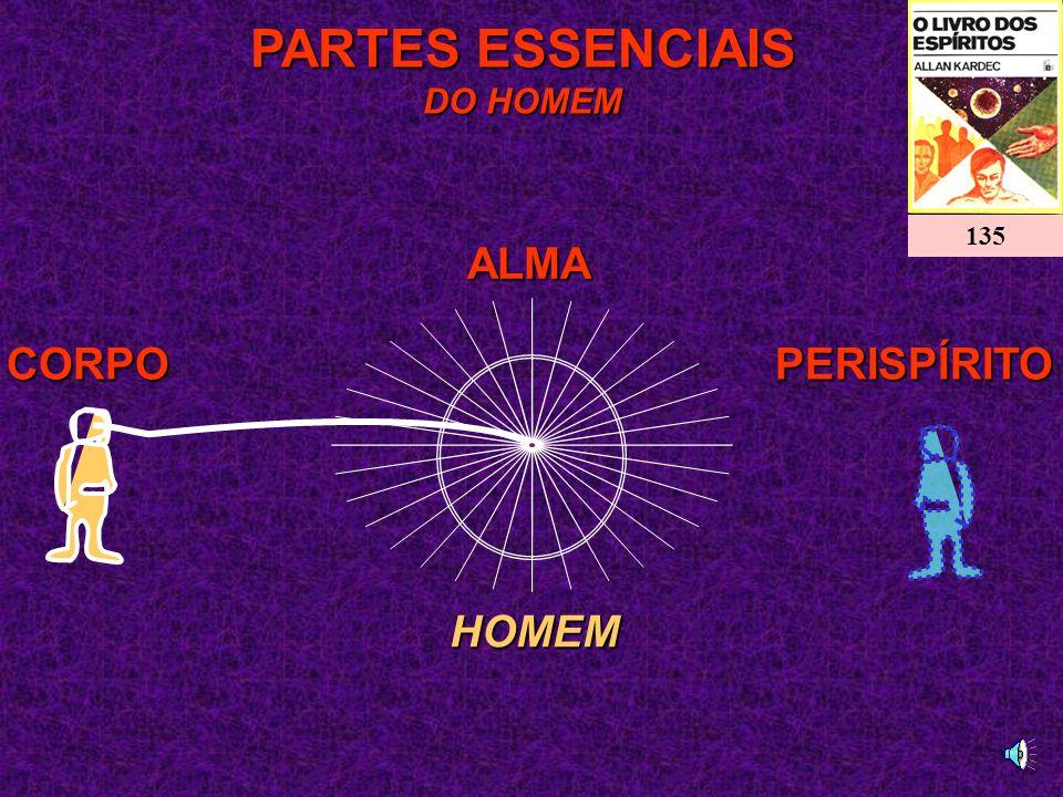 PARTES ESSENCIAIS DO HOMEM