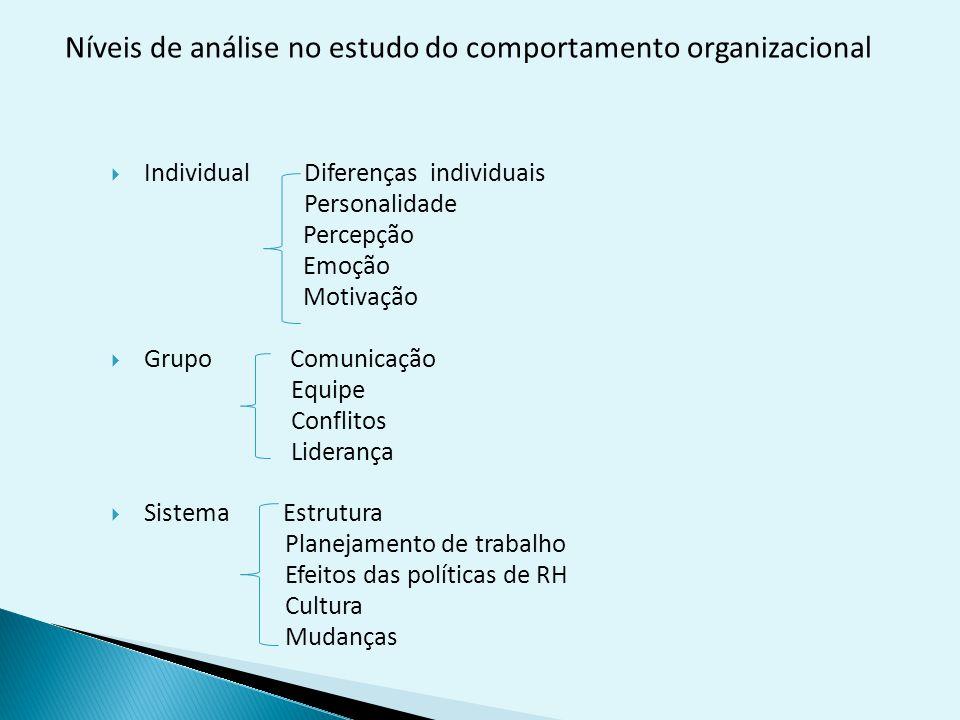 Níveis de análise no estudo do comportamento organizacional