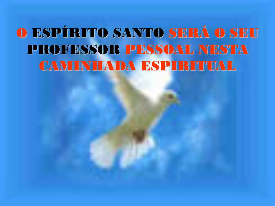 O ESPÍRITO SANTO SERÁ O SEU PROFESSOR PESSOAL NESTA CAMINHADA ESPIRITUAL