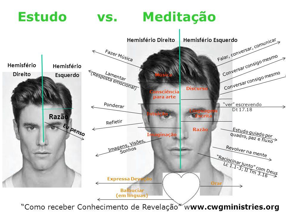 Estudo vs. Meditação Razão