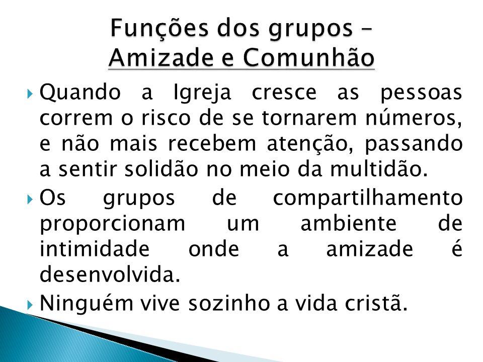 Funções dos grupos – Amizade e Comunhão