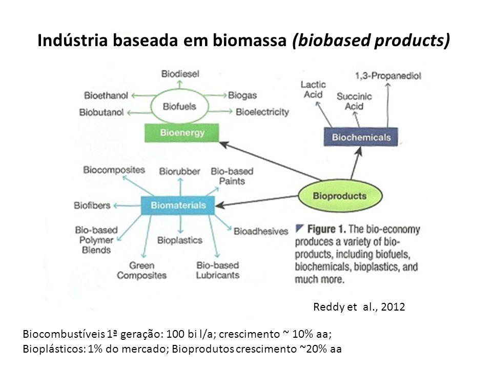 Indústria baseada em biomassa (biobased products)