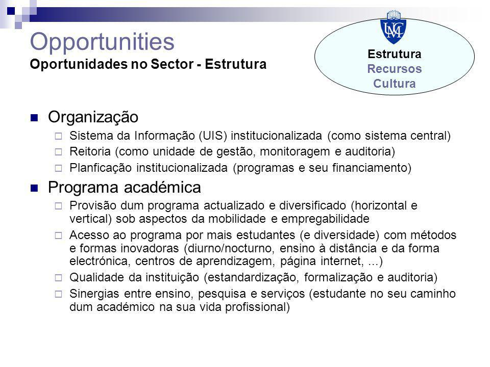 Opportunities Oportunidades no Sector - Estrutura