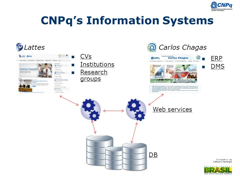 CNPq's Information Systems