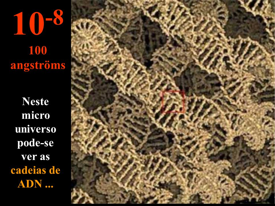 Neste micro universo pode-se ver as cadeias de ADN ...