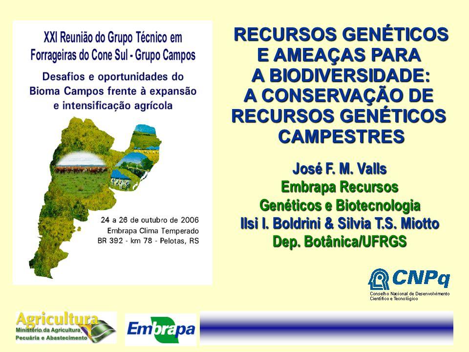 Genéticos e Biotecnologia Ilsi I. Boldrini & Silvia T.S. Miotto