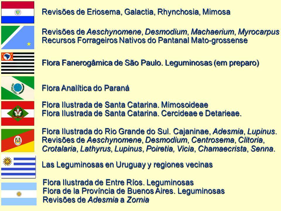 Revisões de Eriosema, Galactia, Rhynchosia, Mimosa
