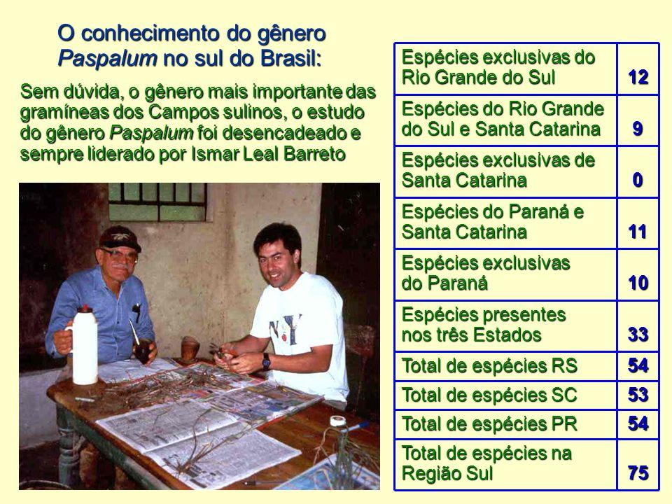 O conhecimento do gênero Paspalum no sul do Brasil: