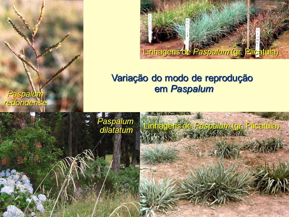Variação do modo de reprodução