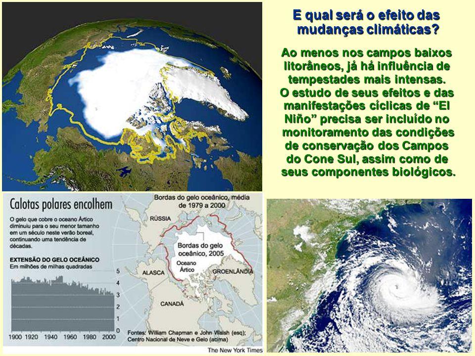 E qual será o efeito das mudanças climáticas