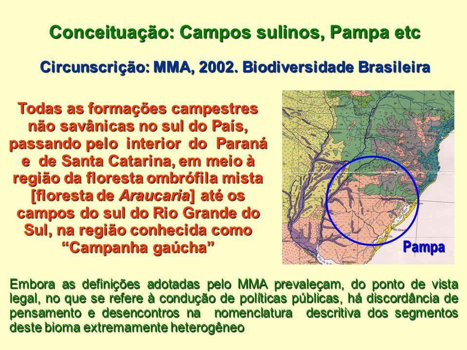 Conceituação: Campos sulinos, Pampa etc