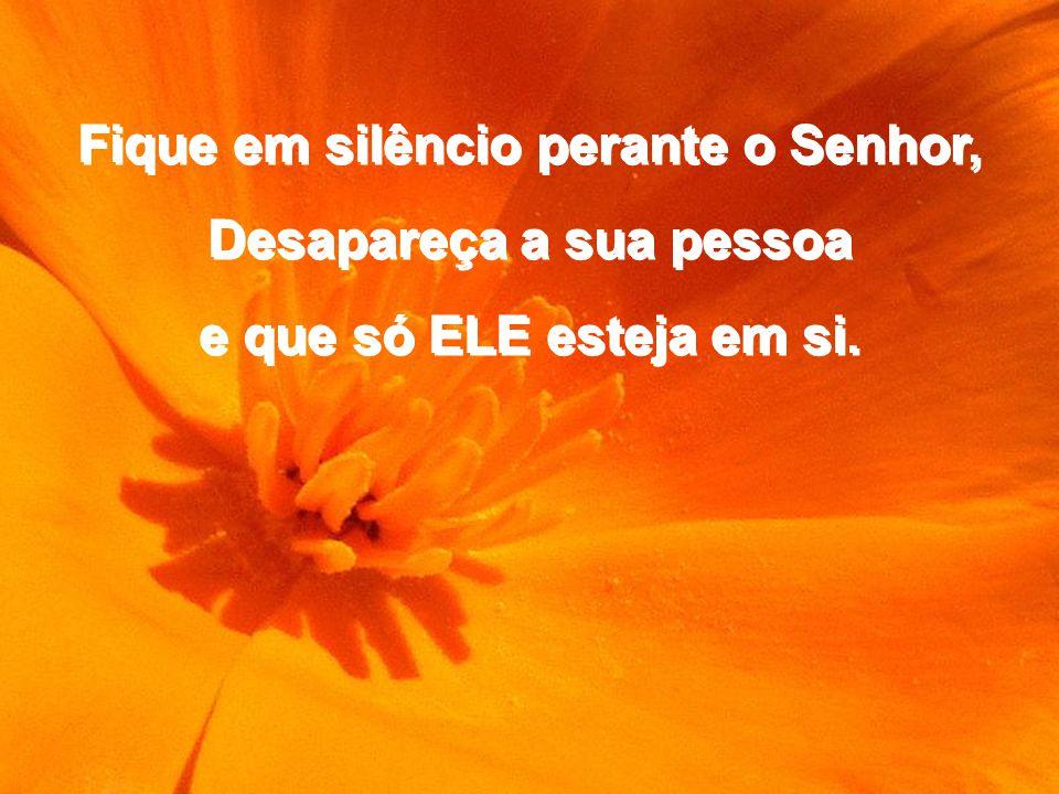 Fique em silêncio perante o Senhor, Desapareça a sua pessoa