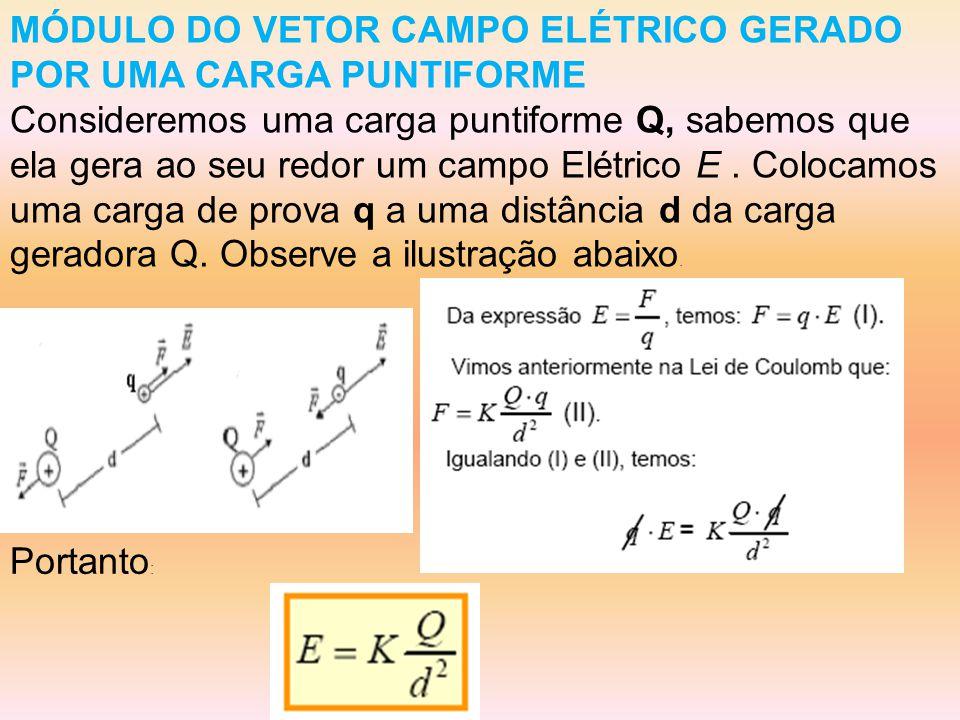 MÓDULO DO VETOR CAMPO ELÉTRICO GERADO POR UMA CARGA PUNTIFORME