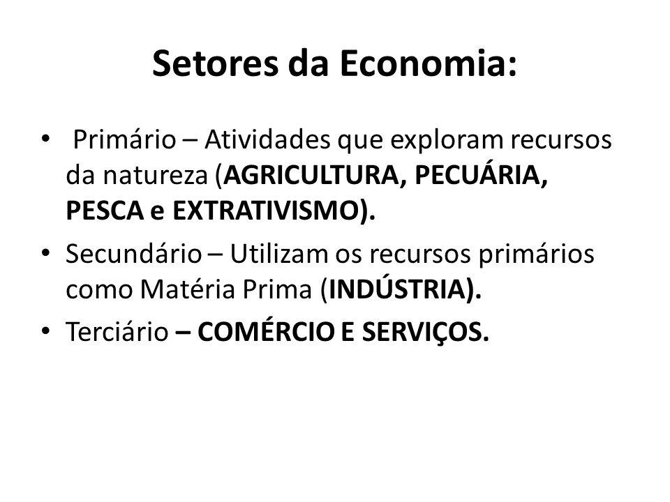 Setores da Economia: Primário – Atividades que exploram recursos da natureza (AGRICULTURA, PECUÁRIA, PESCA e EXTRATIVISMO).