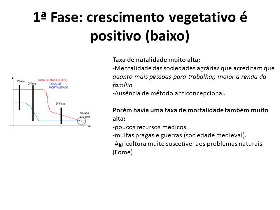 1ª Fase: crescimento vegetativo é positivo (baixo)