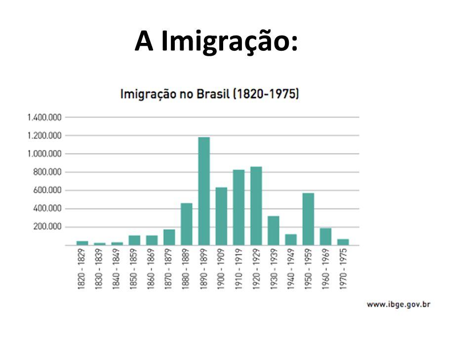A Imigração: