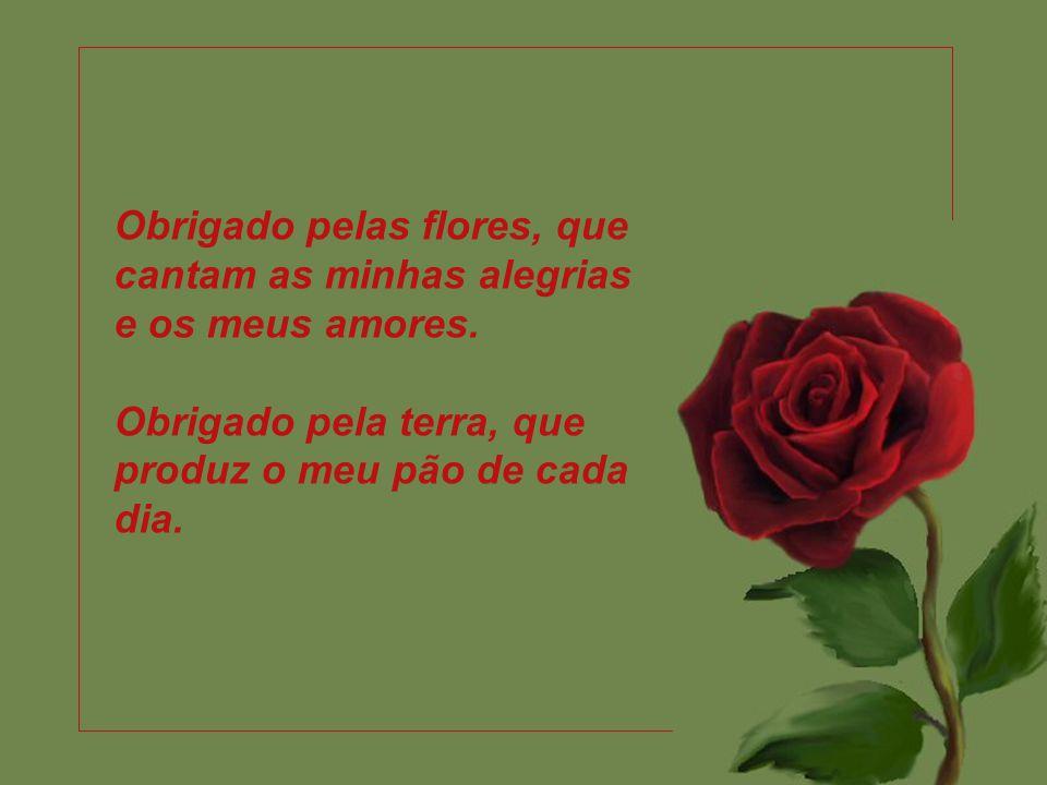 Obrigado pelas flores, que cantam as minhas alegrias e os meus amores.