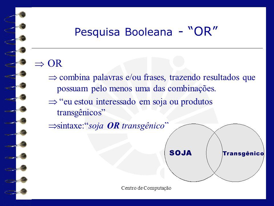 Pesquisa Booleana - OR