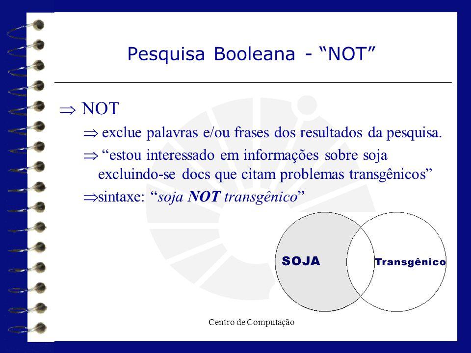 Pesquisa Booleana - NOT