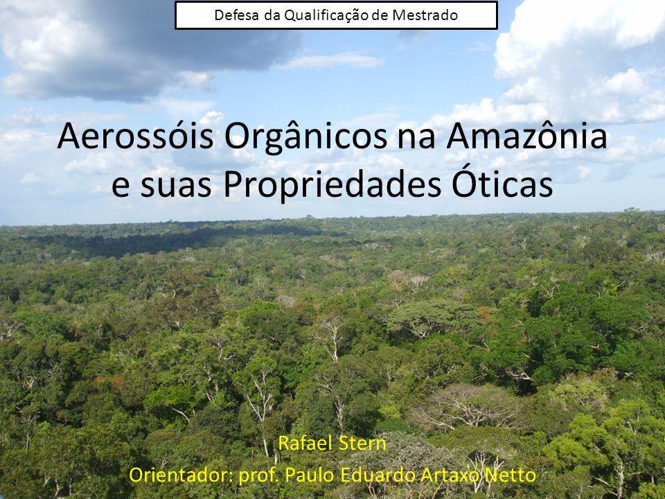 Aerossóis Orgânicos na Amazônia e suas Propriedades Óticas