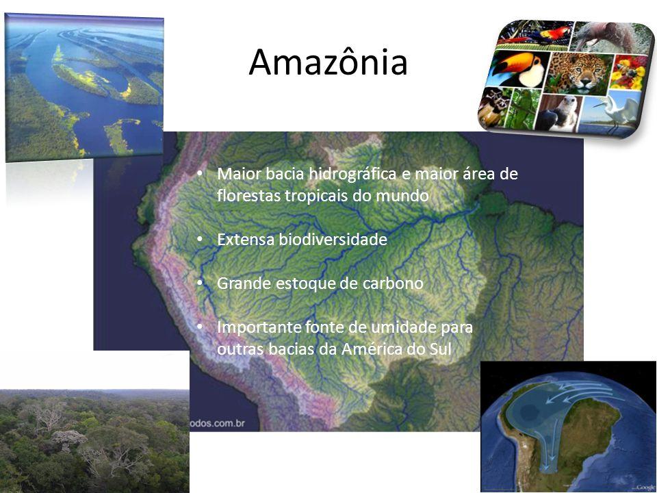 Amazônia Maior bacia hidrográfica e maior área de florestas tropicais do mundo. Extensa biodiversidade.