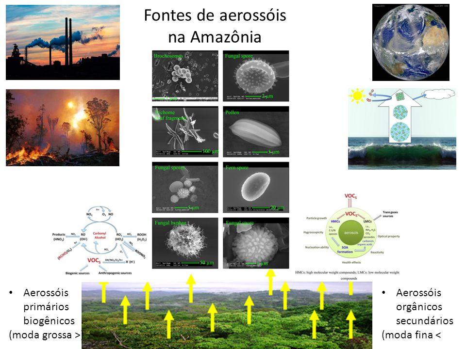 Fontes de aerossóis na Amazônia