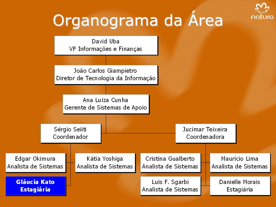 Organograma da Área