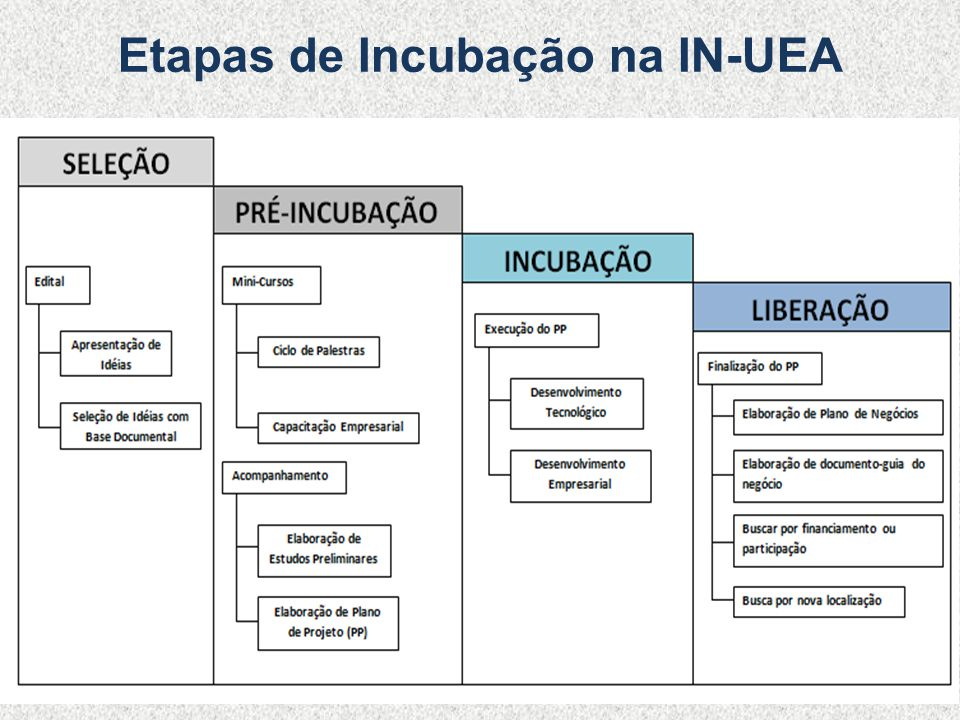Etapas de Incubação na IN-UEA