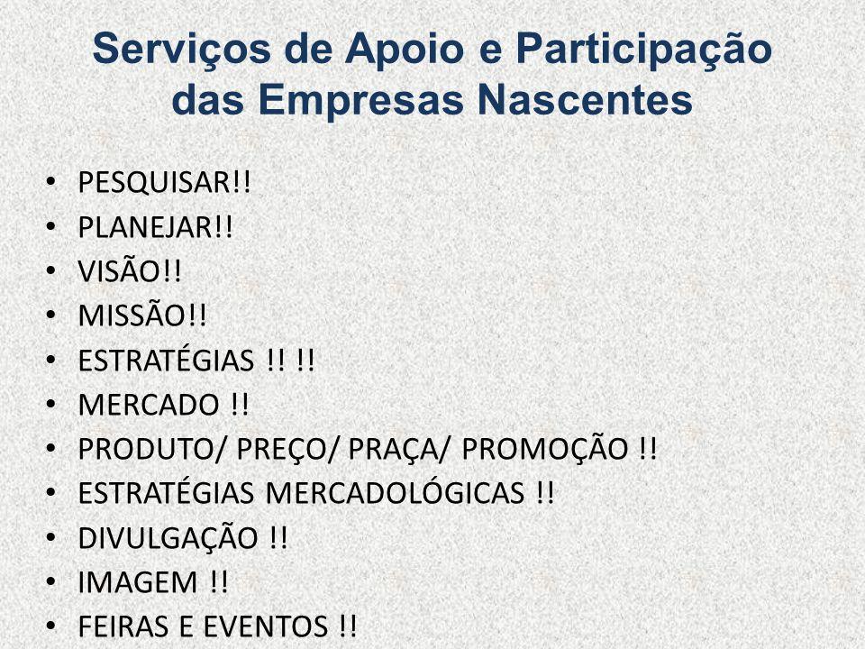 Serviços de Apoio e Participação das Empresas Nascentes