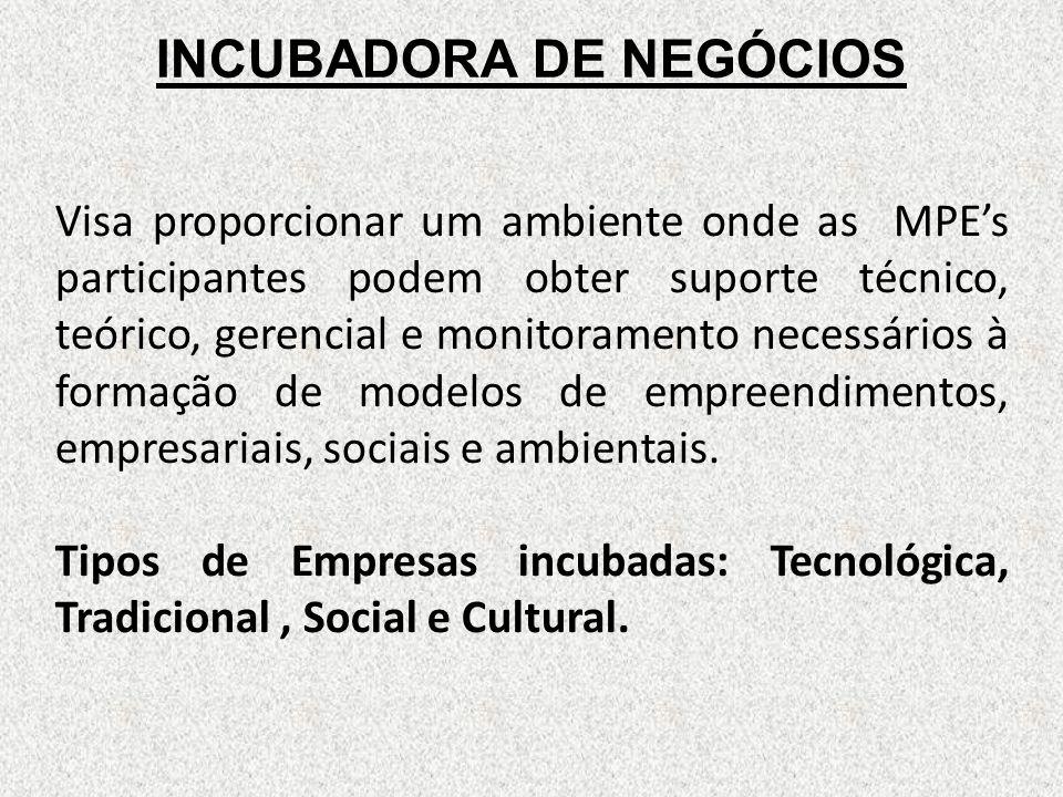 INCUBADORA DE NEGÓCIOS