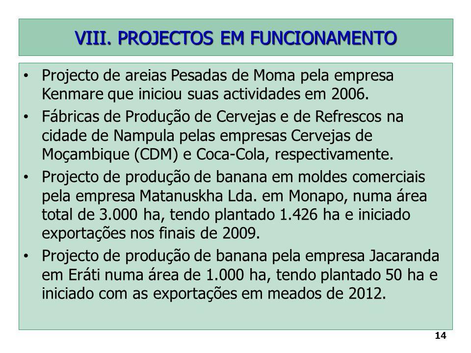 VIII. PROJECTOS EM FUNCIONAMENTO