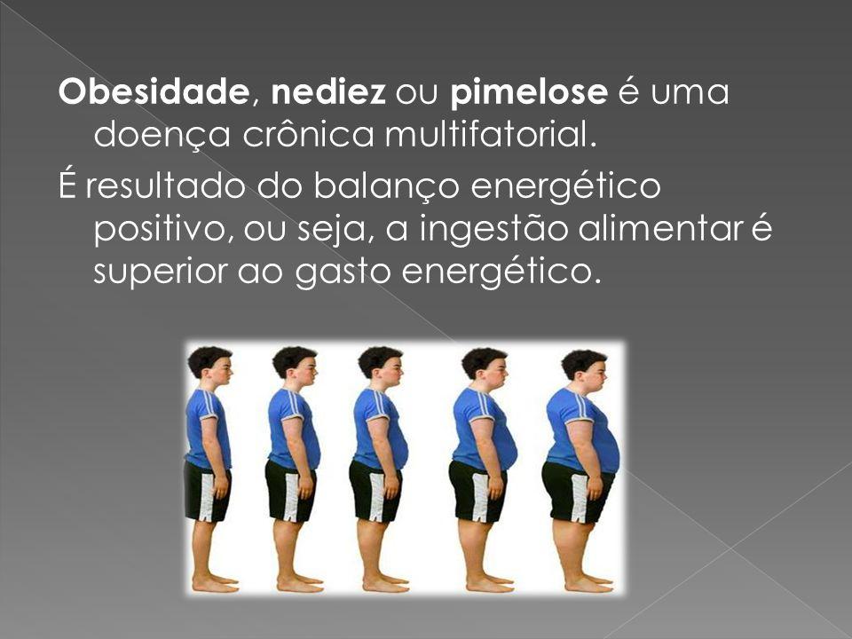 Obesidade, nediez ou pimelose é uma doença crônica multifatorial.