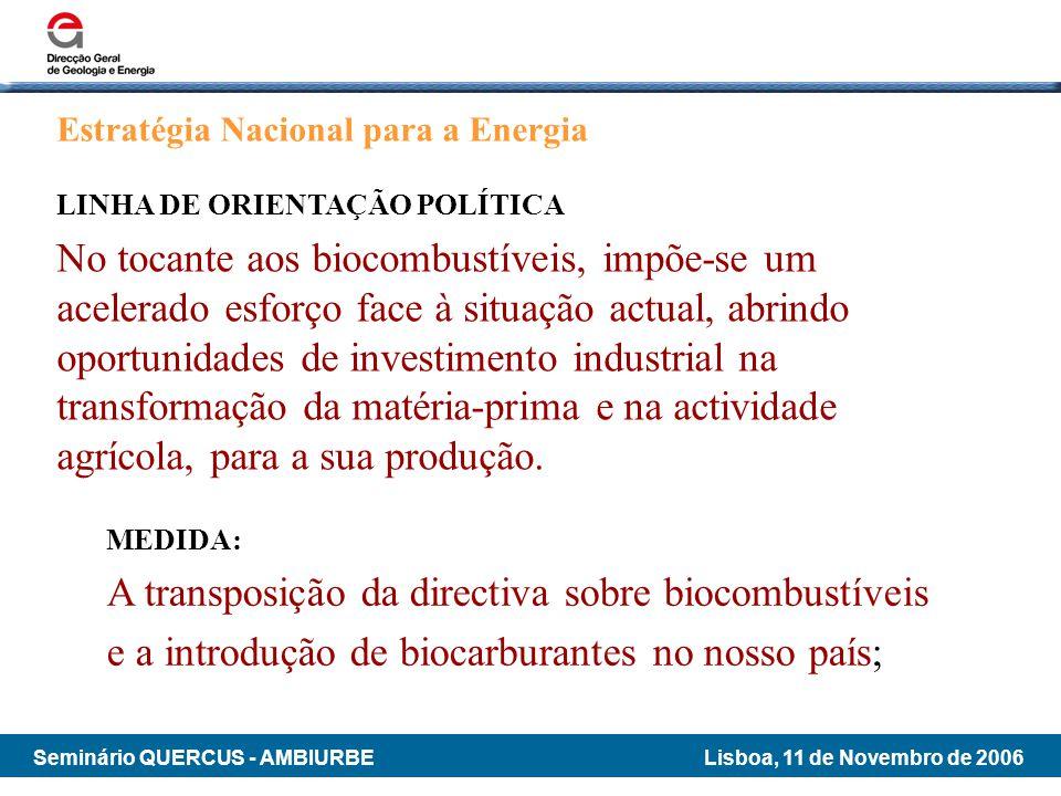 A transposição da directiva sobre biocombustíveis