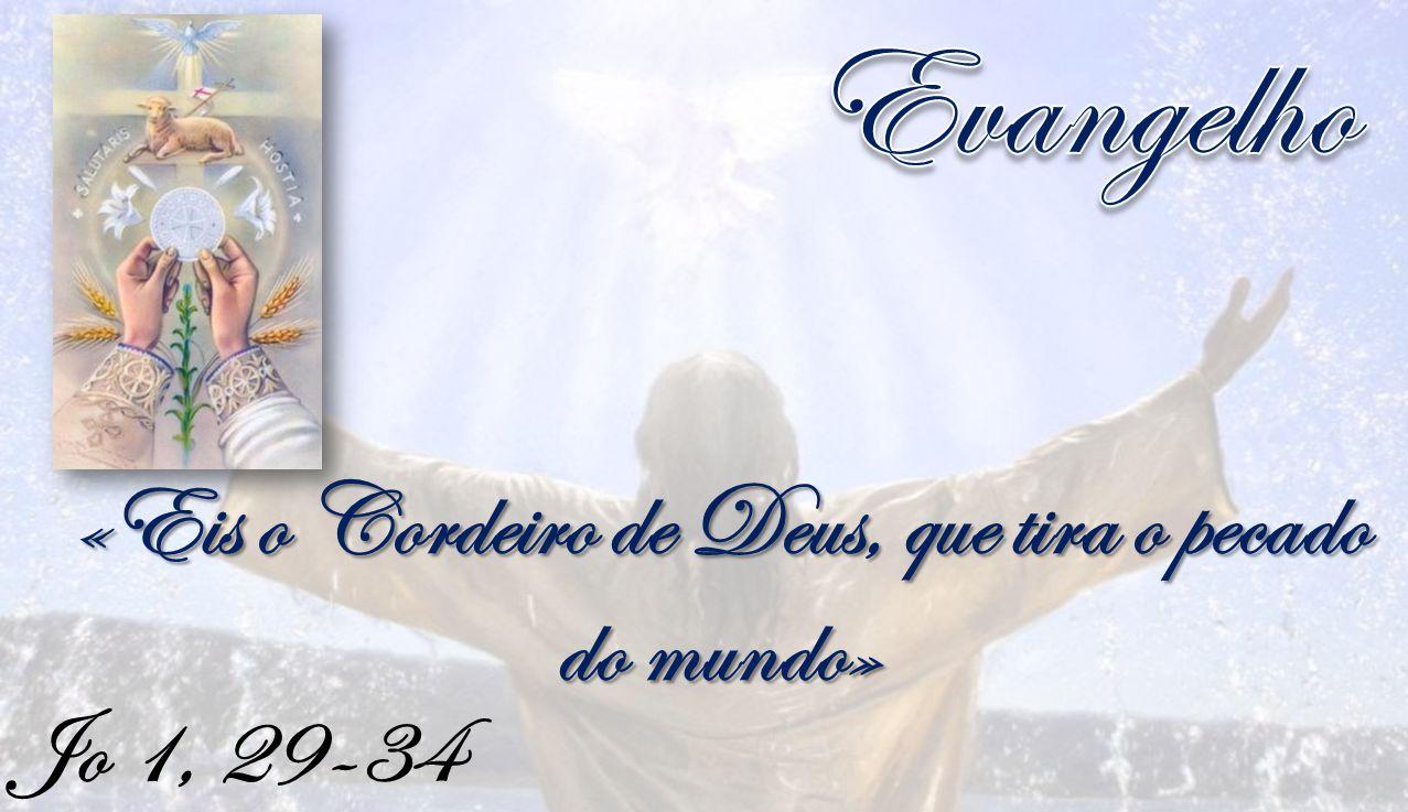 «Eis o Cordeiro de Deus, que tira o pecado do mundo»