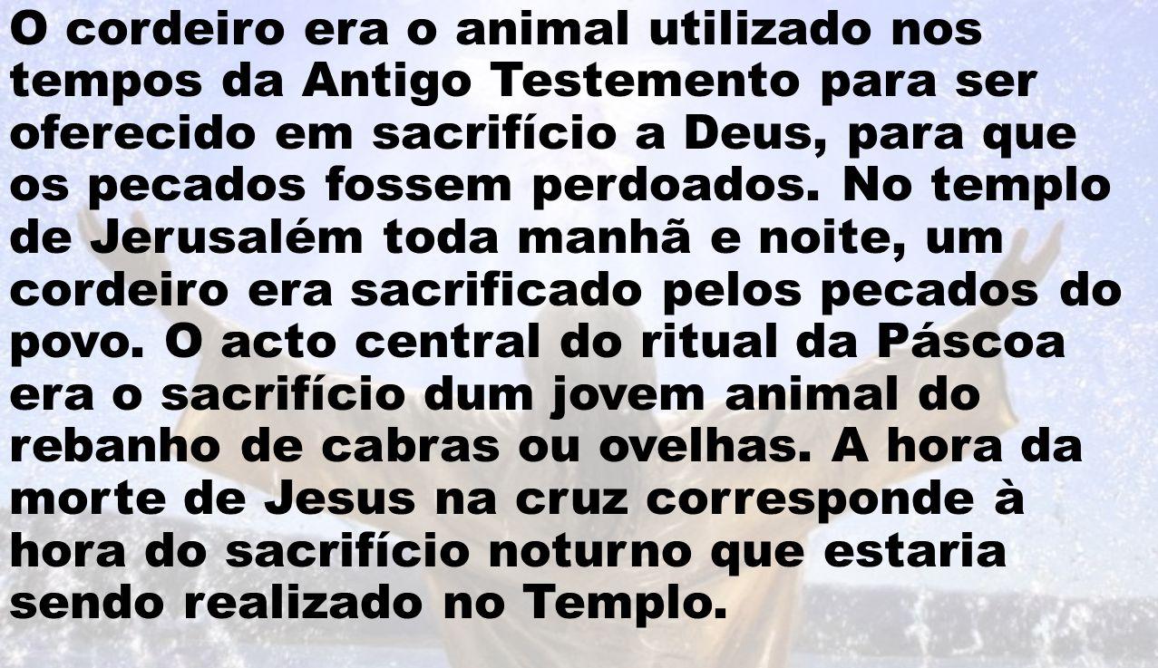 O cordeiro era o animal utilizado nos tempos da Antigo Testemento para ser oferecido em sacrifício a Deus, para que os pecados fossem perdoados.