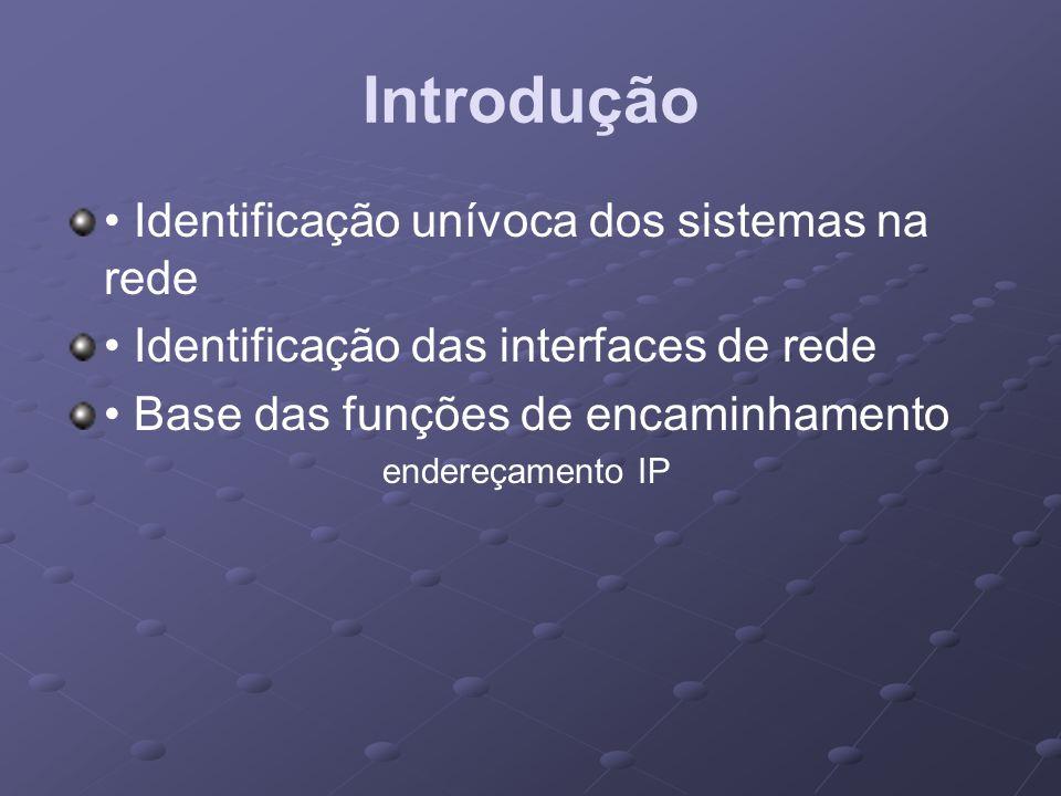 Introdução • Identificação unívoca dos sistemas na rede