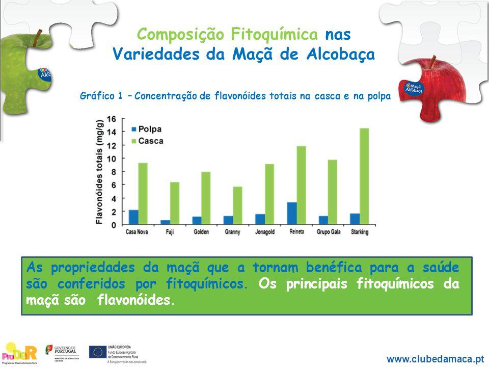 Composição Fitoquímica nas Variedades da Maçã de Alcobaça