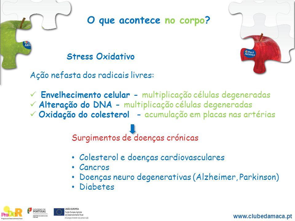 O que acontece no corpo Stress Oxidativo