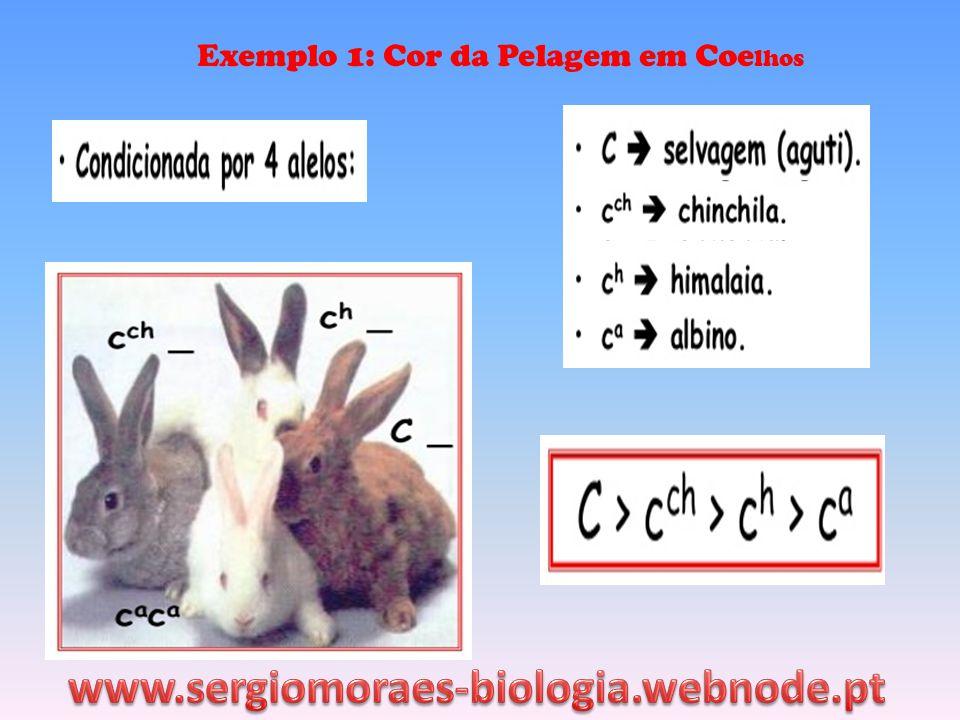 Exemplo 1: Cor da Pelagem em Coelhos