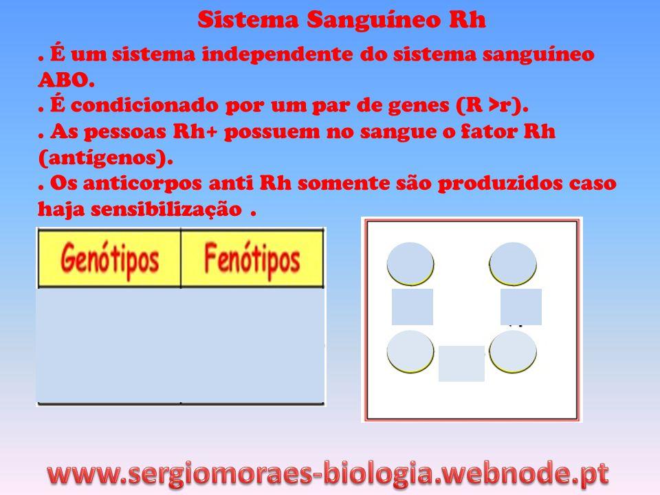 www.sergiomoraes-biologia.webnode.pt Sistema Sanguíneo Rh