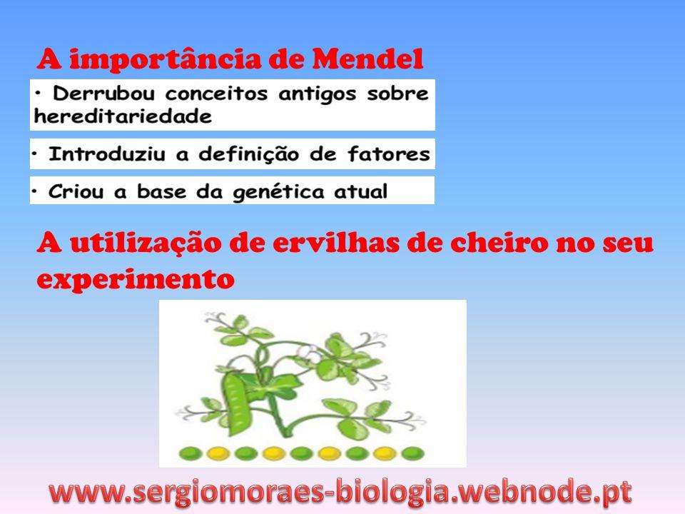 www.sergiomoraes-biologia.webnode.pt A importância de Mendel