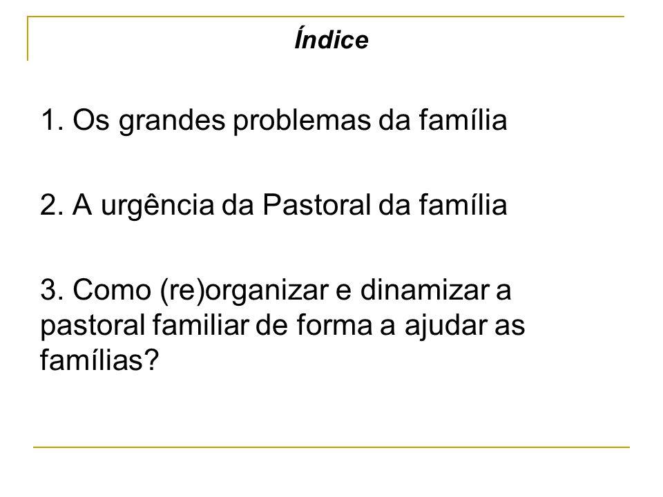 1. Os grandes problemas da família