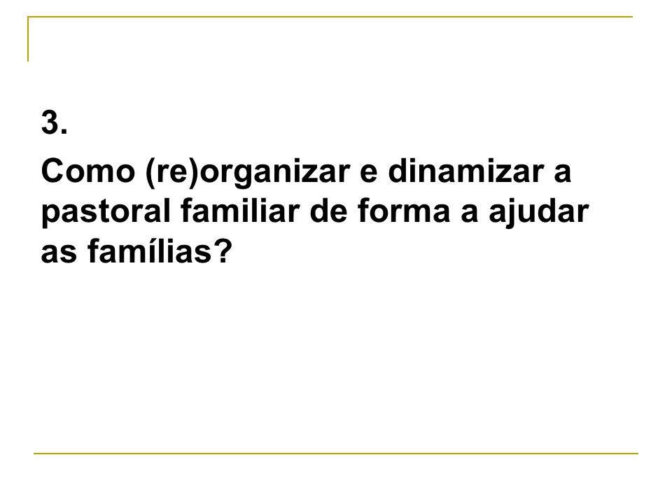 3. Como (re)organizar e dinamizar a pastoral familiar de forma a ajudar as famílias