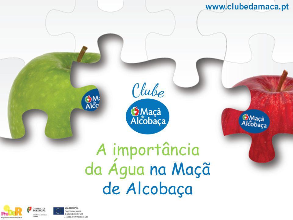 www.clubedamaca.pt A importância da Água na Maçã de Alcobaça
