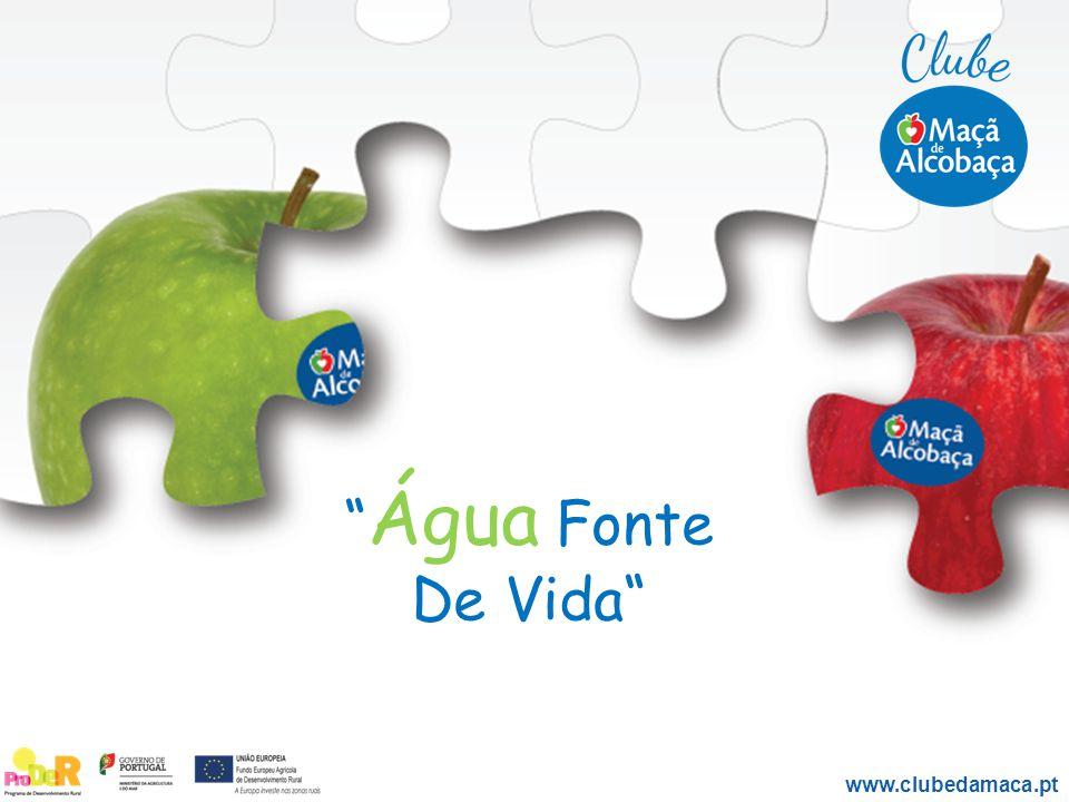Água Fonte De Vida www.clubedamaca.pt
