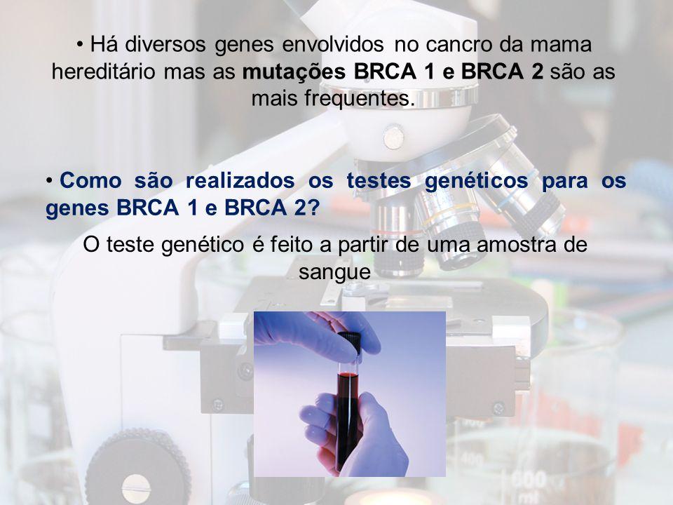 O teste genético é feito a partir de uma amostra de sangue