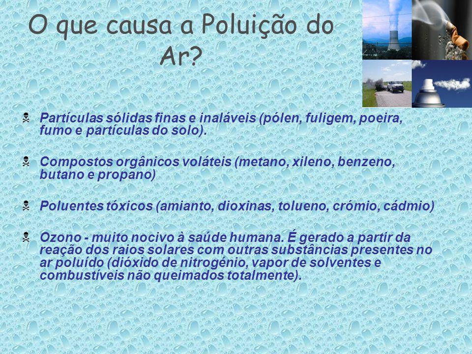 O que causa a Poluição do Ar