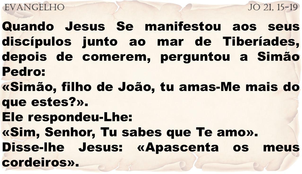 «Simão, filho de João, tu amas-Me mais do que estes ».