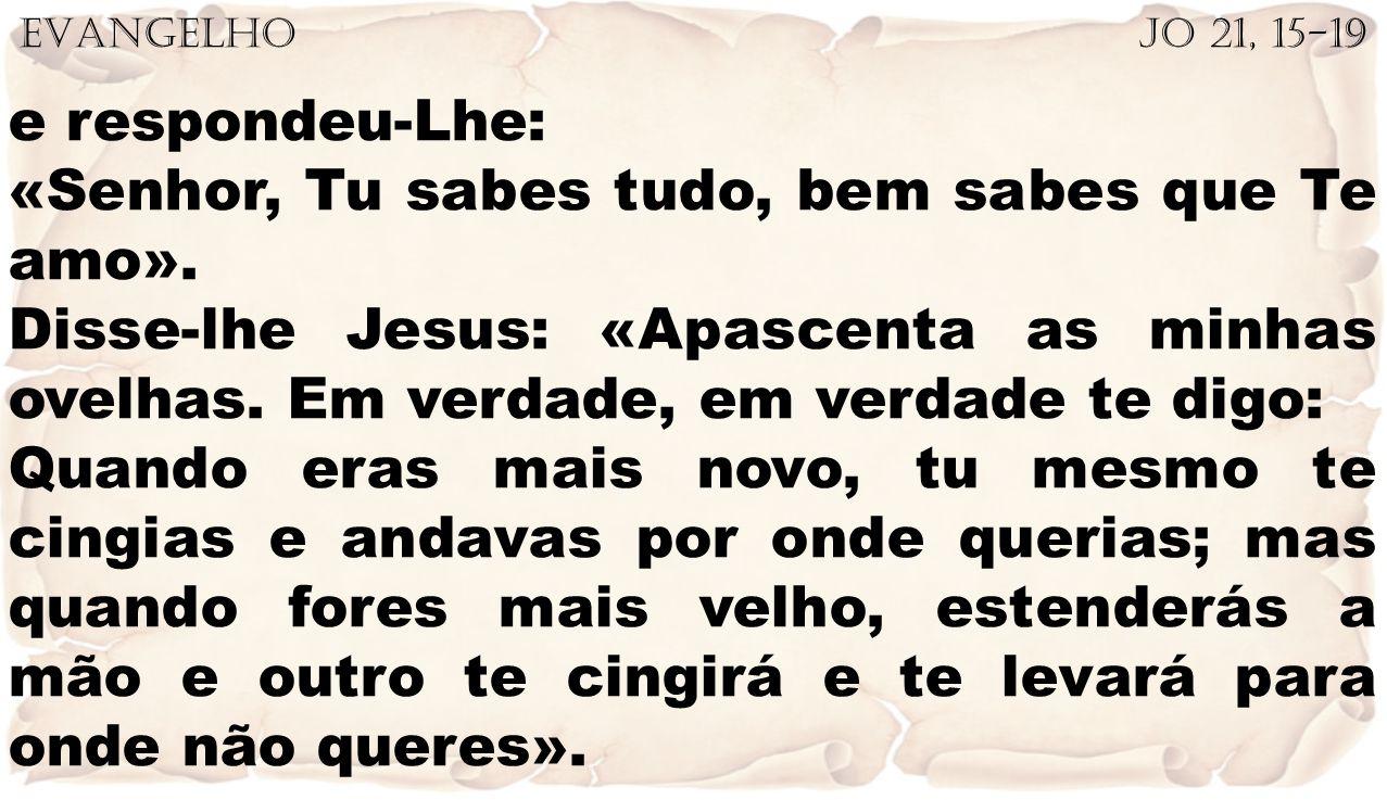 «Senhor, Tu sabes tudo, bem sabes que Te amo».
